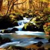 秋の 十和田湖 美しい紅葉 奥入瀬渓流 14km散策しよう!